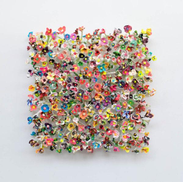 Daisynet by Stefan Gross